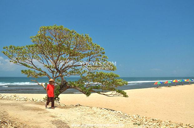 Pok Tunggal Beach A Hidden Sanctuary With Beautiful Scenery